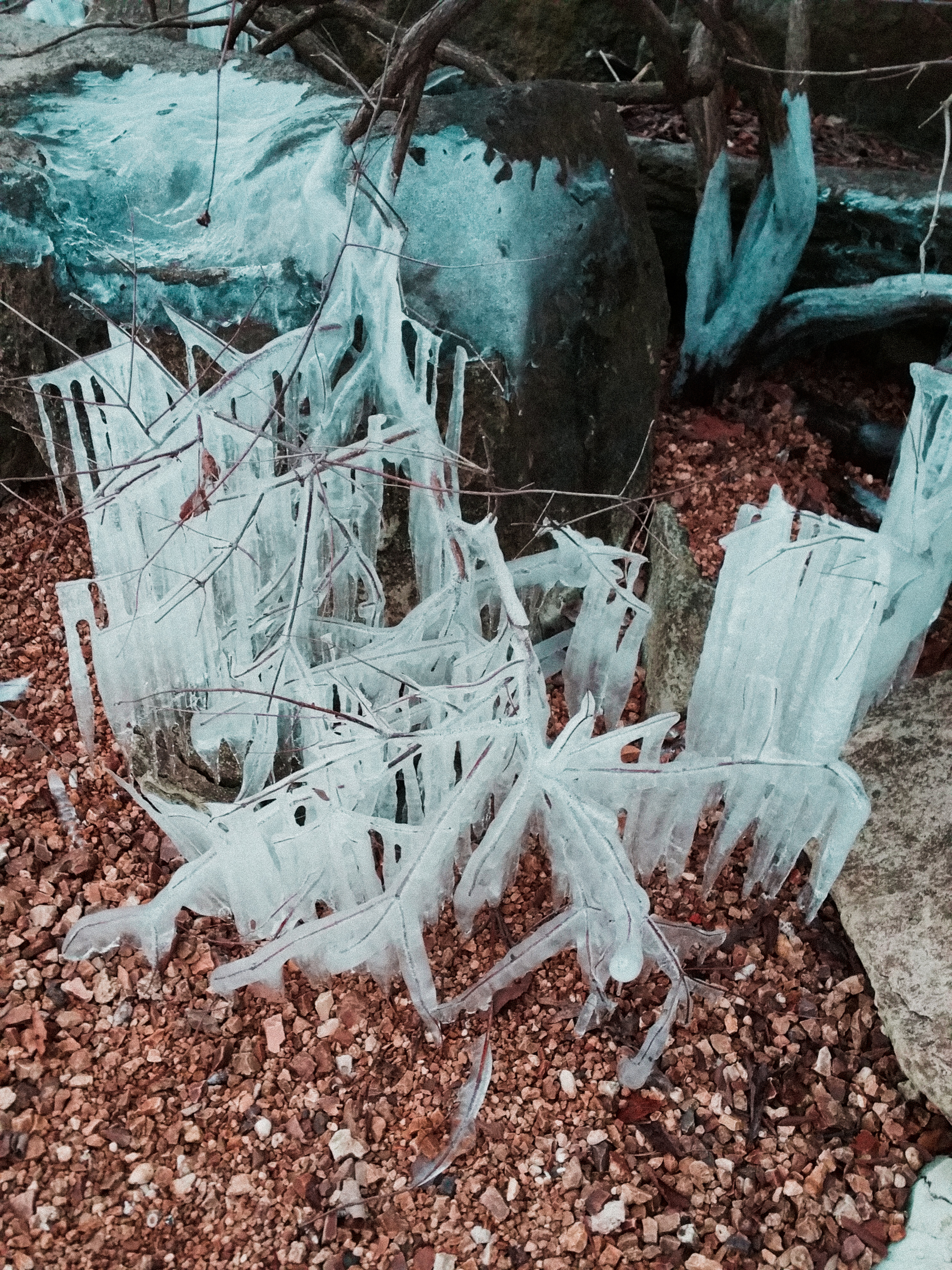 Ice Crystal Formations by the Lake at NBF State Park
